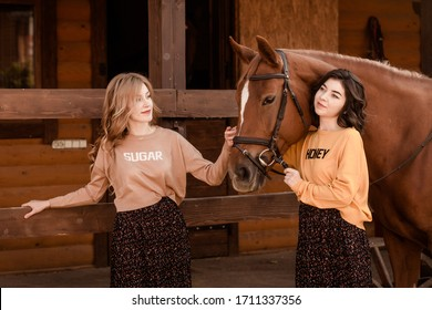 girlfriends are resting on a horse ranch. two beautiful girls near the horse