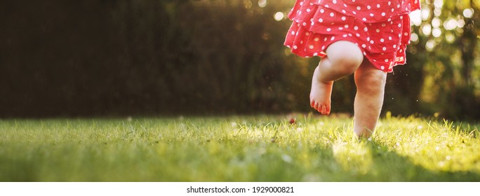 girl's bare feet in the green grass. little Happy child running at sunset barefoot outdoor. Concept of happy childhood