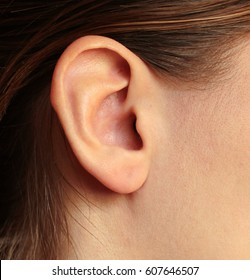 A girl's ear brown-haired women hearing snail