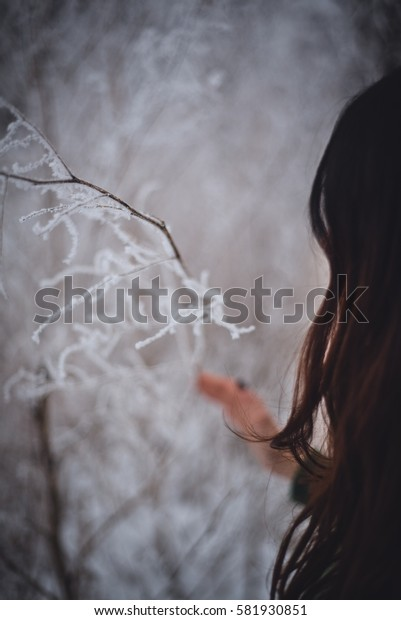 girl's hands holding frozen branch, twig covered with ice outdoors in winter. sunny frosty day. snow background. sweet cozy winter time. winter wonderland. winter still life