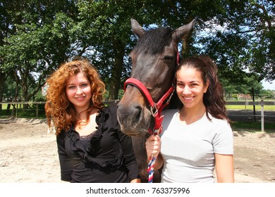 girls having fun holding and walking with brown horse in manage dressage enclosure