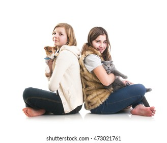 Girls holding their lovely pets: Scottish Fold gray cat and Jack Russell Terrier dog