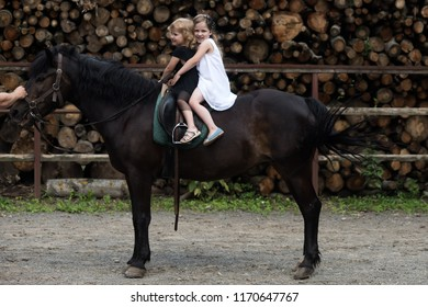 Girls ride on horse on summer day. Children sit in rider saddle on animal back. Equine therapy, recreation concept. Friend, companion, friendship. Sport, activity, entertainment. riding school