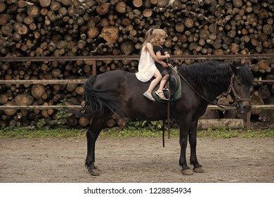 Girls ride on horse on summer day. Equine therapy, recreation concept. Sport, activity, entertainment. Children sit in rider saddle on animal back. Friend, companion, friendship. riding school