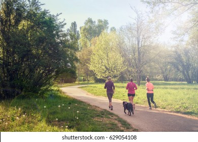 girls running at park with dog, jogging with friends health mode