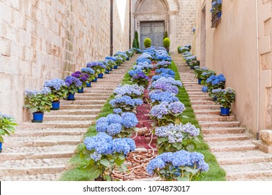 GIRONA,SPAIN-MAY 14,2015:Church ancient stone stairs decorated with flowers in Historic center, spring festival flower,temps de flors.