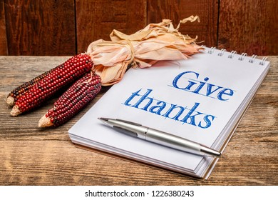 give thanks phrase - handwriting in an art sketchbook with a decorative corn against rustic barn wood