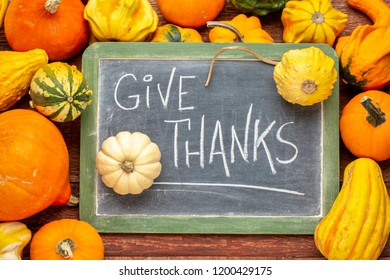 give thanks - Thanksgiving concept - words in white chalk on a blackboard surrounded by winter squash and gourds