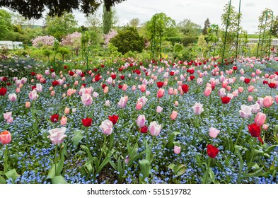 Giverny, France - May 9: Flowers in Claude Monet's hgardens, a famous house of impressionist painter Claude Monet in Giverny located  80 km (50 mi) from Paris.