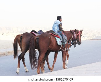 """Giza, Cairo/ Egypt - 11.19.2019 : A man riding horses in Egypt ""."