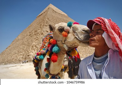GIZA, EGYPT - May 2015: A camel rider interacting with his camel near the Pyramids of Giza.