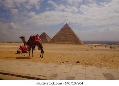 GIZA, EGYPT - May 24: Waiting for tourists on May 24, 2019 in Giza near Cairo. Tourism is an important item in the Egyptian economy. Giza is UNESCO World Heritage Site