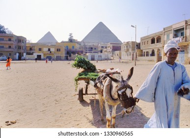 GIZEH,EGYPT-MAY 19, 2017:Man in djelleba with cart and donkey in a suburb of Cairo near the pyramids of Gizeh in Egypt