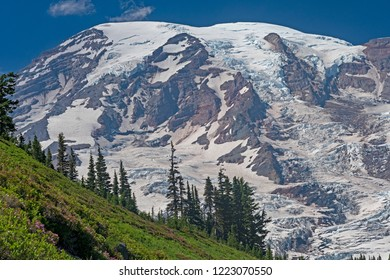 Glaciated Mount Rainier Looming Above the Ridge in Mount Rainier National Park in Washington