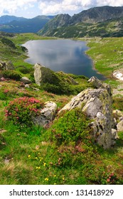Glacier lake surrounded by red rhododendron flowers, Romania