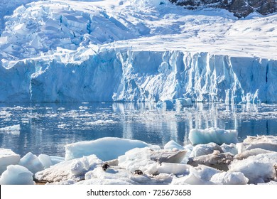 Glacier reflected in the Antarctic waters of Neco bay and a few pinguins laying on icebergs, Antarctica