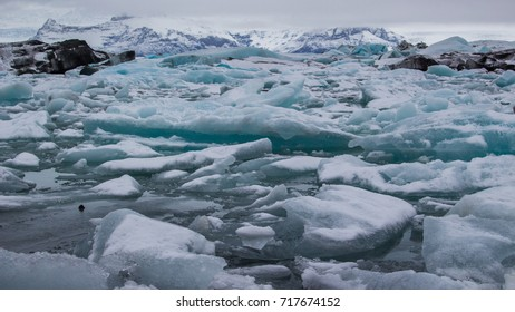 Glaciers float on the still water with underneath rocks. The ice mountain is on background. Jokulsarlon, Iceland, wintertime.