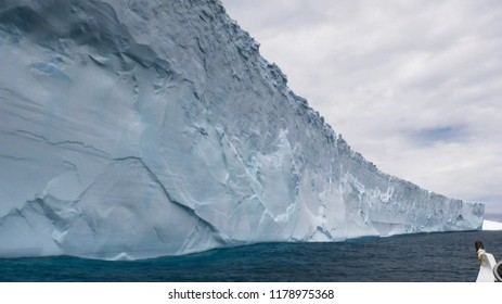 Glaciers of polar caps of the Earth. Ice Wall of sheet glacier (Ice front, zone of ablation).