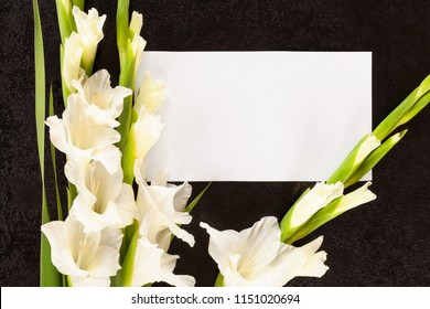 Gladioli flowers with white card from above. Obituary or death notice concept.