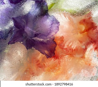 gladioli, gladiolus, frozen flower, watercolor, purple gladioli, flowers, background, ice