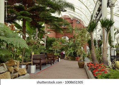 Glasgow, United Kingdom - October 16, 2017: An indoors walking path in the winter garden of the People's Palace, a museum and public glasshouse in the Glasgow Green park, among visitors