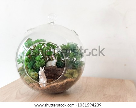 Glass Ball Terrarium Small Plants Little Stock Photo Edit Now