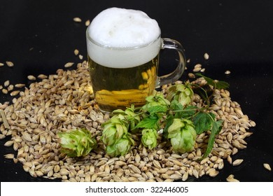 A glass of beer with malt and hops.