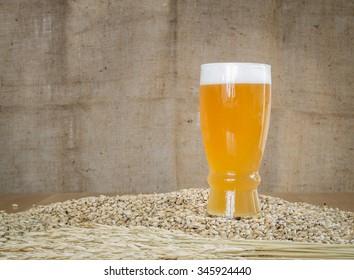 Glass of beer on malt grains