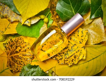 A glass bottle of female perfume laid on autumn yellow leaves. Natural perfumery. Autumn season.