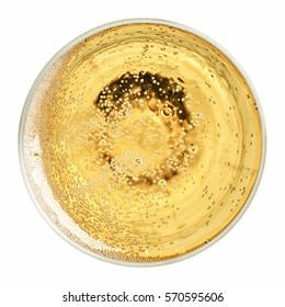 glass of champagne isolated on white background, top view