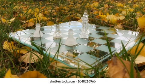 A glass chessboard and leftover pieces on a grassy ground covered with leaves
