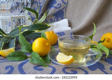 A glass cup of  bergamot tea. Fresh bergamot fruits and bergamot tree twigs in the background.