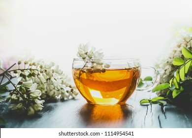 Glass cup of herbal acacia tea in back light , front view, copy space