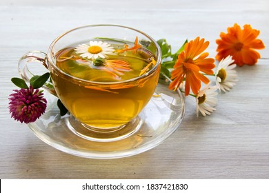 Glass Cup with medicinal herbal drink, marigold and clover flowers.