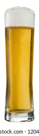 A glass of fresh poured beer in a glass.