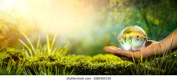 Glass globe in hand,concept for environment.