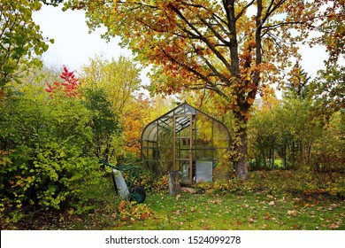 Glass greenhouse in autumn colors. Fall foliage in the garden. A greenhouse stretches the growing season so you can start growing earlier every year and enjoy your tomatoes  during the fall months.