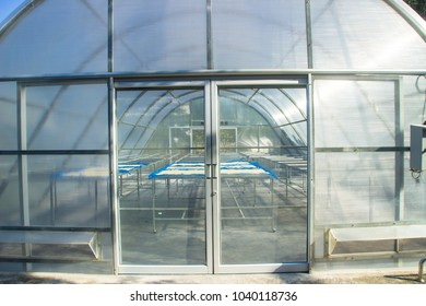 Glass greenhouse with sun dried fruit in green house solar drying.