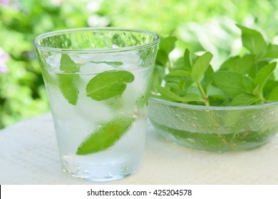 glass of iced mint water
