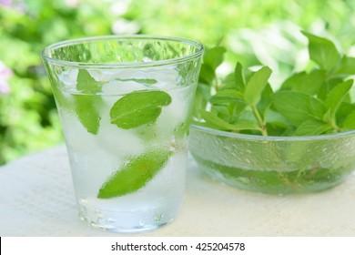 Glas vereisten Minzwassers