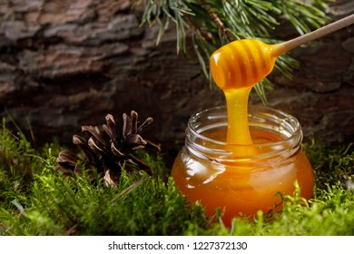 A glass jar of fragrant fragrant honey standing in the moss against the background of textured tree bark.