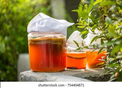 Glass jar of Kombucha fermented tea in garden