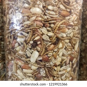 glass jar with nuts, seeds, fruit, and worms