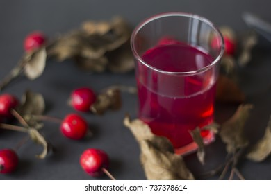 glass of juice and wild apples are on the dry branch on a black background
