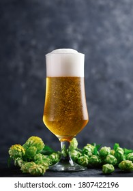 A glass of light lager on the table with hop cones in close-up . Double hopped lager beer - Shutterstock ID 1807422196