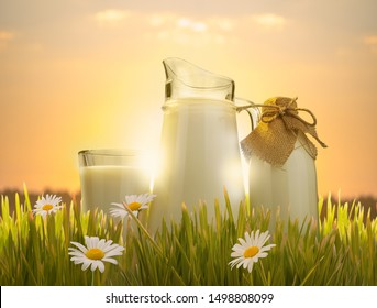 glass of milk and jug in grass