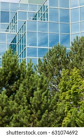Glass office building  behind a green space with trees
