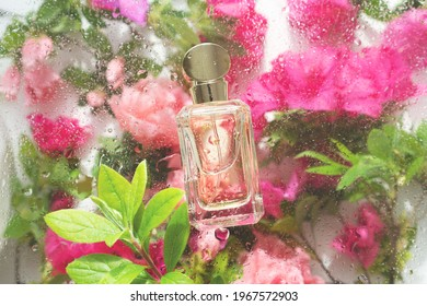glass perfume bottle with water drops on a background strewn with flowers. Summer floral perfume concept