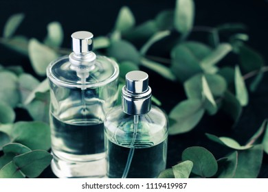 Glass perfume spray bottles, green eucalyptus leaves, black soft background. Natural sensual scents.