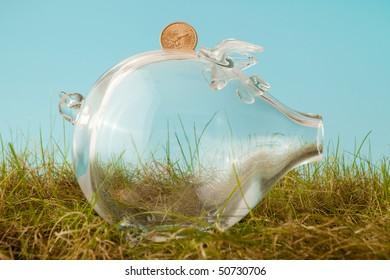 Glass piggy bank and a dollar in grass